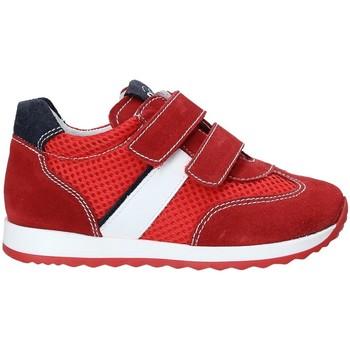 kengät Lapset Matalavartiset tennarit NeroGiardini P923451M Punainen