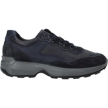 kengät Miehet Matalavartiset tennarit IgI&CO 4114311 Sininen
