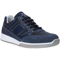 kengät Miehet Matalavartiset tennarit Valleverde 53861 Sininen