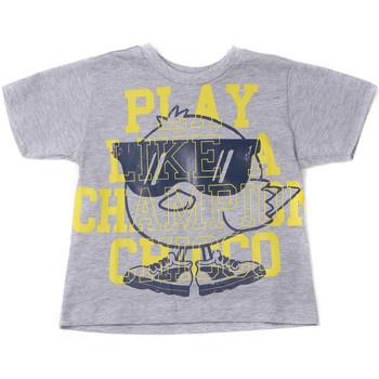 vaatteet Lapset Lyhythihainen t-paita Chicco 09006918000000 Harmaa