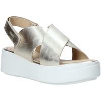 kengät Naiset Sandaalit ja avokkaat Impronte IL01529A Muut