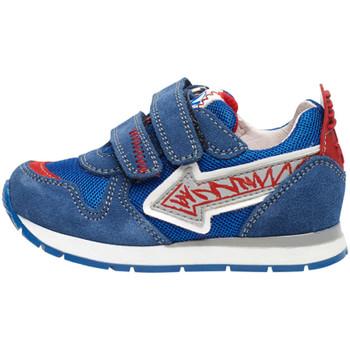 kengät Lapset Matalavartiset tennarit Naturino 2014913 01 Sininen