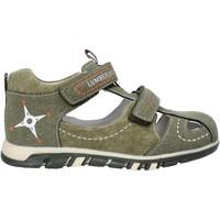 kengät Lapset Sandaalit ja avokkaat Lumberjack SB42106 004 P63 Vihreä