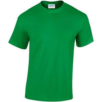 vaatteet Miehet Lyhythihainen t-paita Gildan GD05 Irish Green