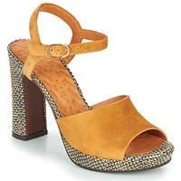 kengät Naiset Sandaalit ja avokkaat Chie Mihara CASSETTE Ruskea