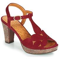 kengät Naiset Sandaalit ja avokkaat Chie Mihara EGEO Viininpunainen