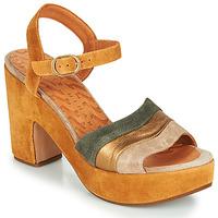 kengät Naiset Sandaalit ja avokkaat Chie Mihara YEVA Kulta
