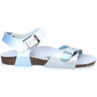 kengät Lapset Sandaalit ja avokkaat Gold Star 8846D Sininen