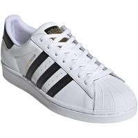 kengät Miehet Matalavartiset tennarit adidas Originals EG4958 Valkoinen
