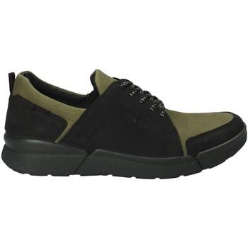 kengät Miehet Matalavartiset tennarit IgI&CO 2126322 Vihreä