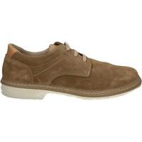 kengät Miehet Derby-kengät Enval 7885 Muut