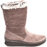 kengät Naiset Nilkkurit IgI&CO 2167333 Ruskea