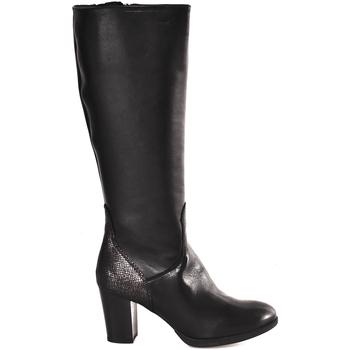 kengät Naiset Saappaat IgI&CO 2196400 Musta