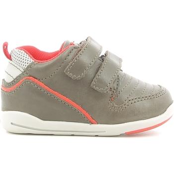 kengät Lapset Matalavartiset tennarit Chicco 01056499000000 Ruskea