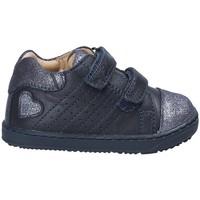 kengät Pojat Matalavartiset tennarit Chicco 01058475 Sininen