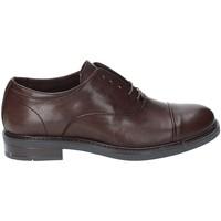 kengät Miehet Herrainkengät Rogers 1236 Harmaa