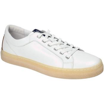 kengät Miehet Matalavartiset tennarit IgI&CO 3134500 Valkoinen