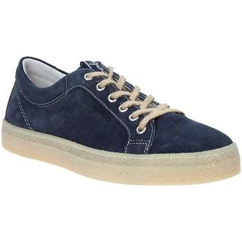 kengät Miehet Matalavartiset tennarit IgI&CO 3134511 Sininen