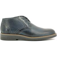 kengät Miehet Bootsit Rogers 1790B Sininen
