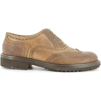 kengät Miehet Derby-kengät Rogers 2042B Ruskea