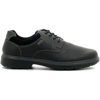 kengät Miehet Derby-kengät Enval 6891 Musta