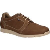 kengät Miehet Derby-kengät Baerchi 5080 Ruskea