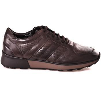 kengät Miehet Matalavartiset tennarit Soldini 20630 2 Ruskea