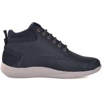 kengät Miehet Bootsit Wrangler WM182150 Sininen