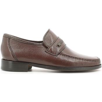 kengät Miehet Mokkasiinit Fontana 1934 CE Ruskea