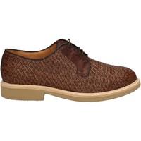kengät Miehet Derby-kengät Soldini 20113 2 V05 Ruskea