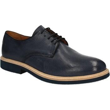 kengät Miehet Derby-kengät Soldini 20114 S V05 Sininen