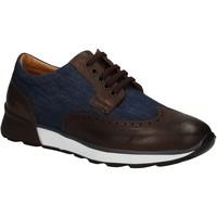 kengät Miehet Derby-kengät Soldini 20132 3 U72 Ruskea