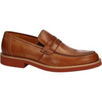 kengät Miehet Mokkasiinit Rogers 1008B Ruskea