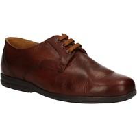 kengät Miehet Derby-kengät Fontana 5685-VI Ruskea