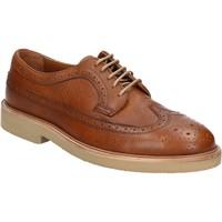 kengät Miehet Derby-kengät Maritan G 111914 Ruskea