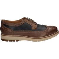 kengät Miehet Derby-kengät Keys 3047 Ruskea