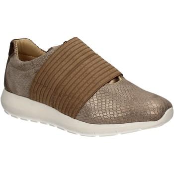 kengät Naiset Tennarit IgI&CO 7764 Ruskea