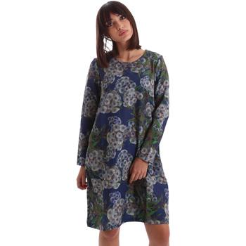 vaatteet Naiset Lyhyt mekko Gazel AB.AB.ML.0026 Sininen