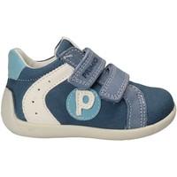 kengät Lapset Matalavartiset tennarit Primigi 7521 Sininen