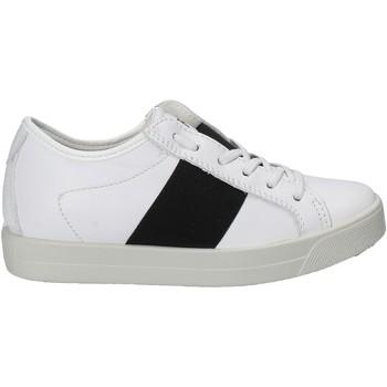 kengät Lapset Matalavartiset tennarit Primigi 7579 Valkoinen