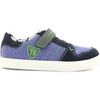 kengät Lapset Matalavartiset tennarit Lumberjack SB02205 006 O06 Violetti