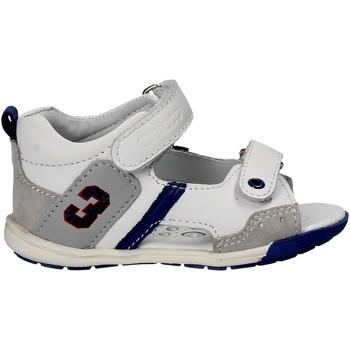 kengät Lapset Sandaalit ja avokkaat Chicco 01057445 Valkoinen