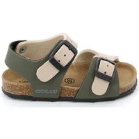 kengät Lapset Sandaalit ja avokkaat Grunland SB0413 Beige