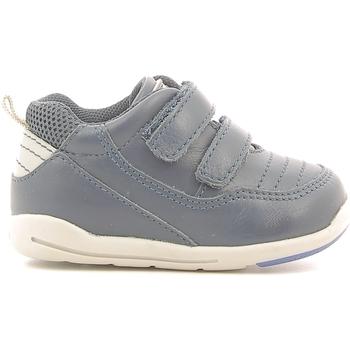 kengät Lapset Matalavartiset tennarit Chicco 01056500000000 Sininen