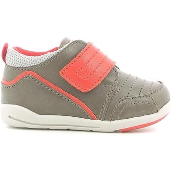 kengät Lapset Matalavartiset tennarit Chicco 01056498000000 Ruskea