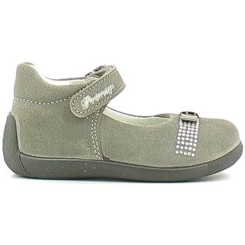 kengät Tytöt Balleriinat Primigi 6515 Harmaa