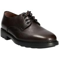 kengät Miehet Derby-kengät Maritan G 111333 Ruskea