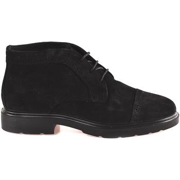 kengät Miehet Bootsit IgI&CO 2100833 Musta
