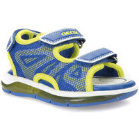 kengät Pojat Sandaalit ja avokkaat Geox B720GC 011BC Sininen