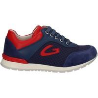 kengät Lapset Matalavartiset tennarit Alberto Guardiani GK23301 Sininen